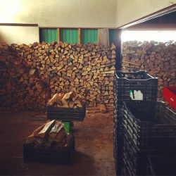 大先輩の薪作り