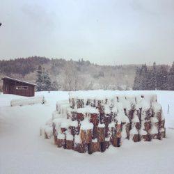 春の薪割り物語